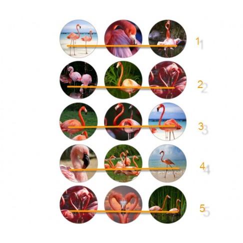 """CCC-02 Paveiksliukai """" Flamingai"""" apie 25mm, kaina už 3vnt."""