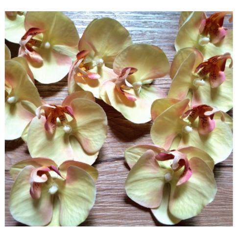 DK-R361 Dirbtinės orchidejs žiedas,  apie  7cm,  KREMINĖ