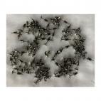 7-NP98111 Nerūdyjančio plieno vinutės, auskarams, su taurele 5mm, už porą