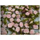 """G-00255  Satininė gėlytė """"Rožytė"""", apie 15x25mm, 1vnt.,  ROŽINĖ"""