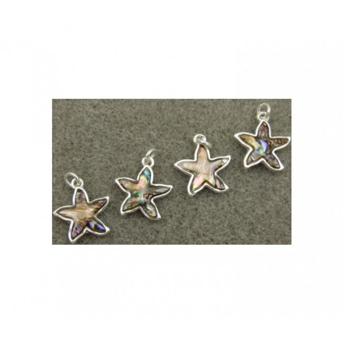 7-PSK1704 Abolonės kriauklės pakabukas, sidabruotas, 20x15mm, jūros žvaigždė