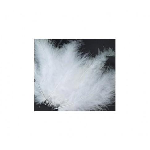 PLUNKS-B3 Stručio plunksna-pūkas, 10-14cm, už 4-5 vnt., balta
