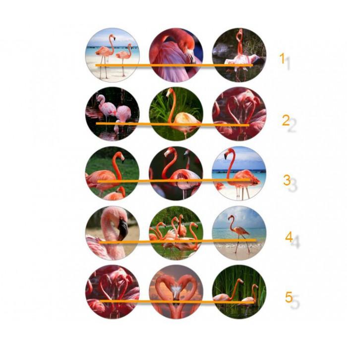 """CCC-01 Paveiksliukai """" Flamingai"""" apie 25mm, kaina už 3vnt."""