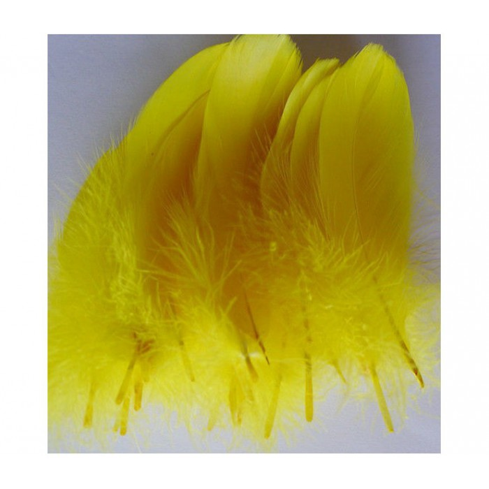 PL-AA2  Plunksna, 15-20cm, geltona