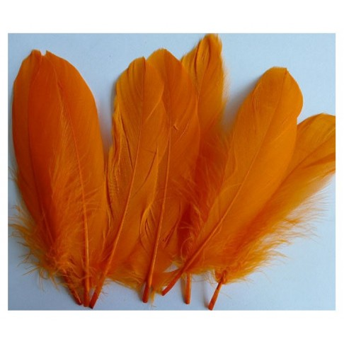 PL-AA3 Plunksna, 15-20cm, oranžinė