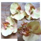 DK-R363  Dirbtinės orchidejs žiedas,  apie 10cm, KREMINĖ