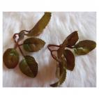 DK-P370  Rožių lapeliai, 6x6/6x6 cm